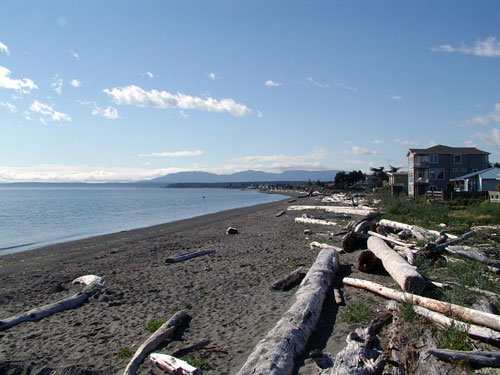 [ 3 Crabs Beach House in Sequim, Washington ]